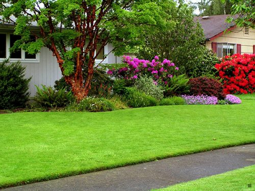 Lawn Care in Red Oak TX